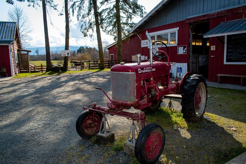 Farmall Tractor : Morningstar Farm | Little Qualicum Cheeseworks