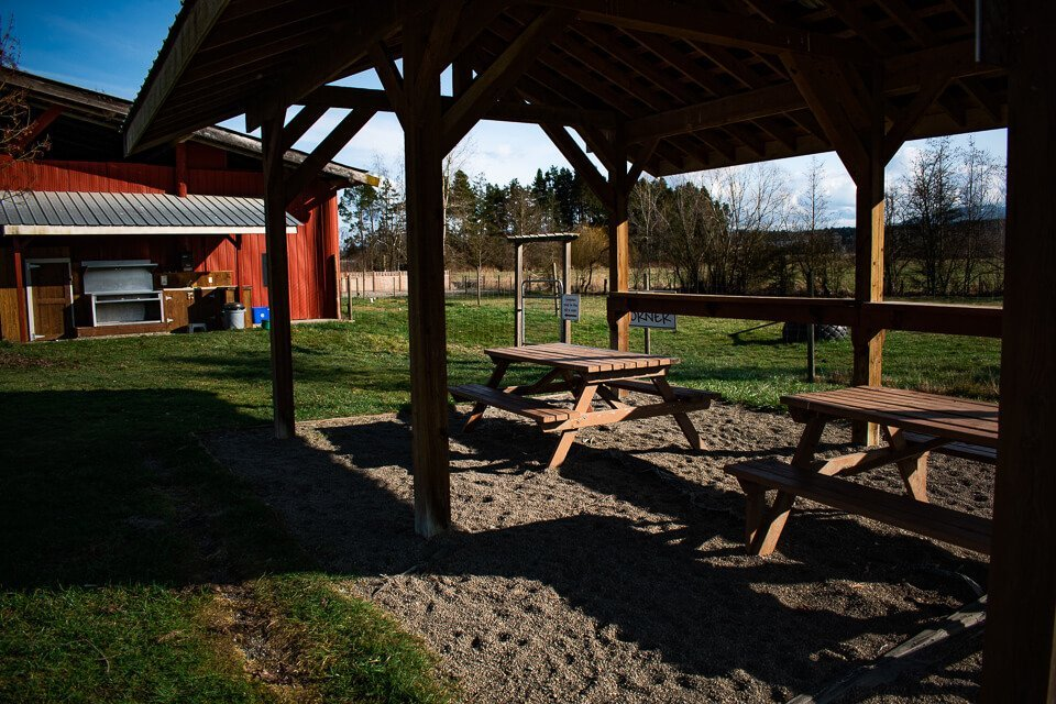 Picnic Area at Morningstar Farm | Little Qualicum Cheeseworks